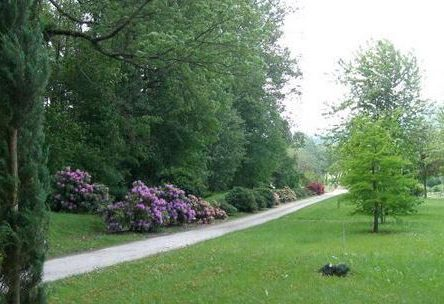 botanični vrt um