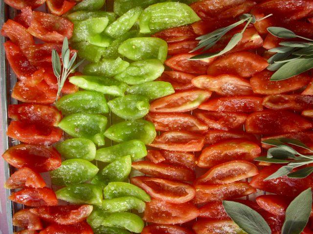sušenje paradižnika