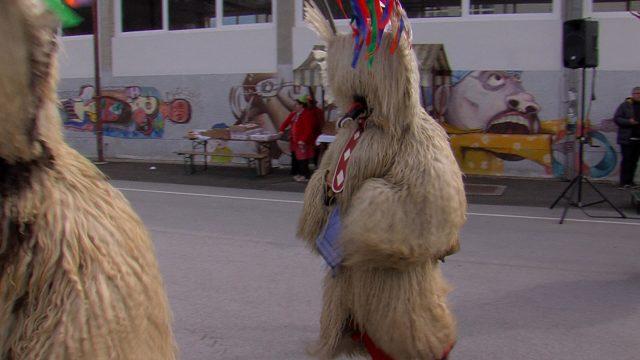 karneval, povorka selnica ob dravi, pust (2)