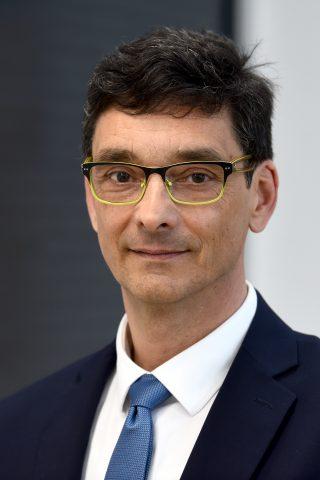 Peter Svetina, Varuh človekovih pravic